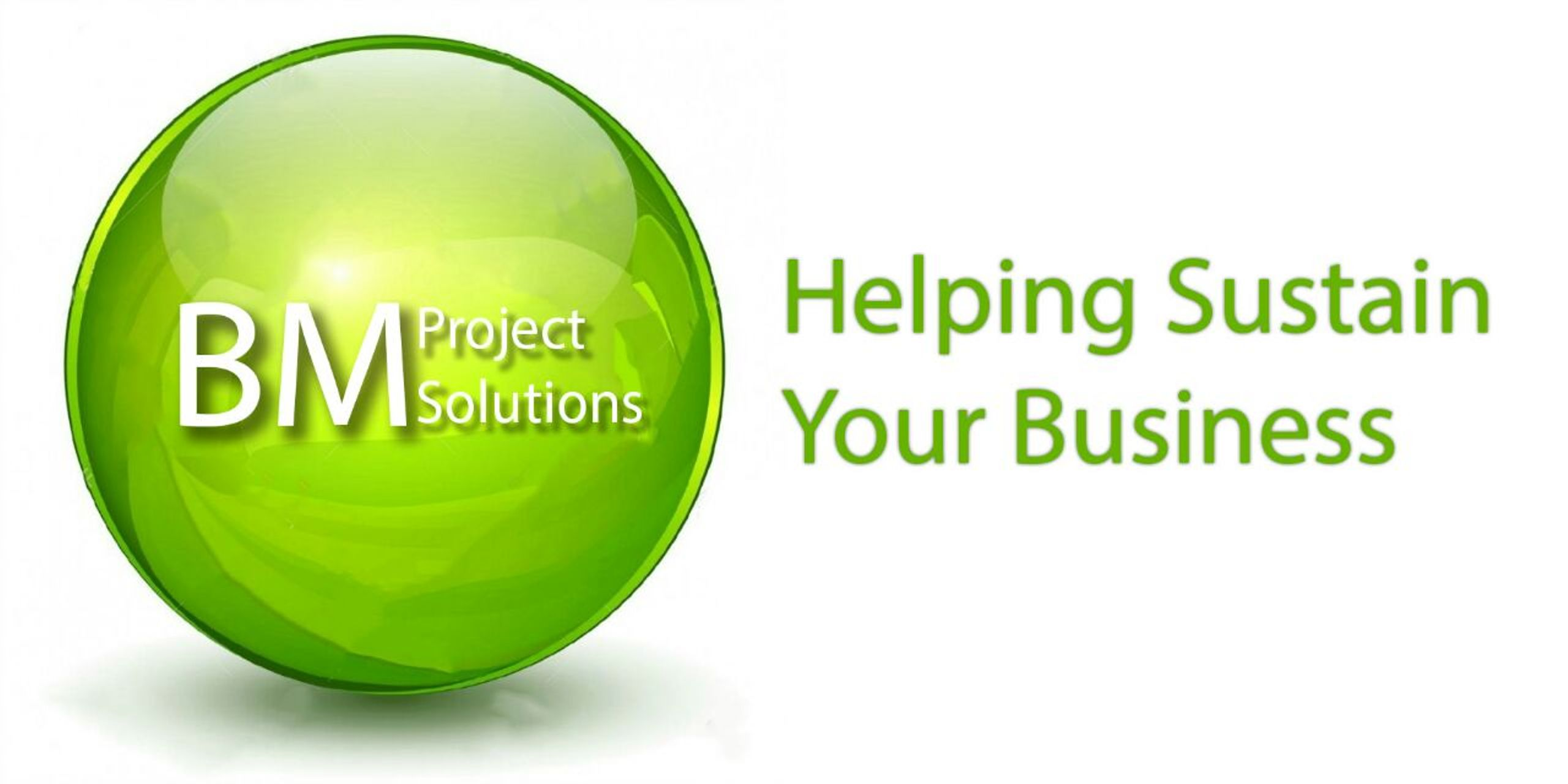 BM Project Solutions